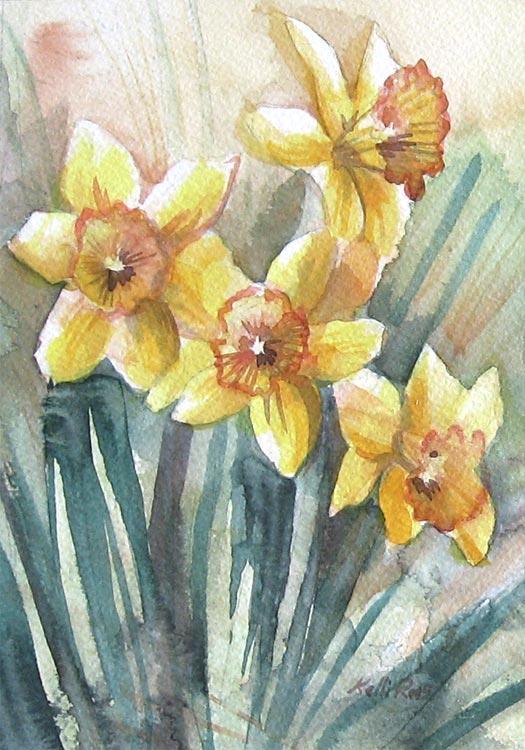 05-daffodil-12