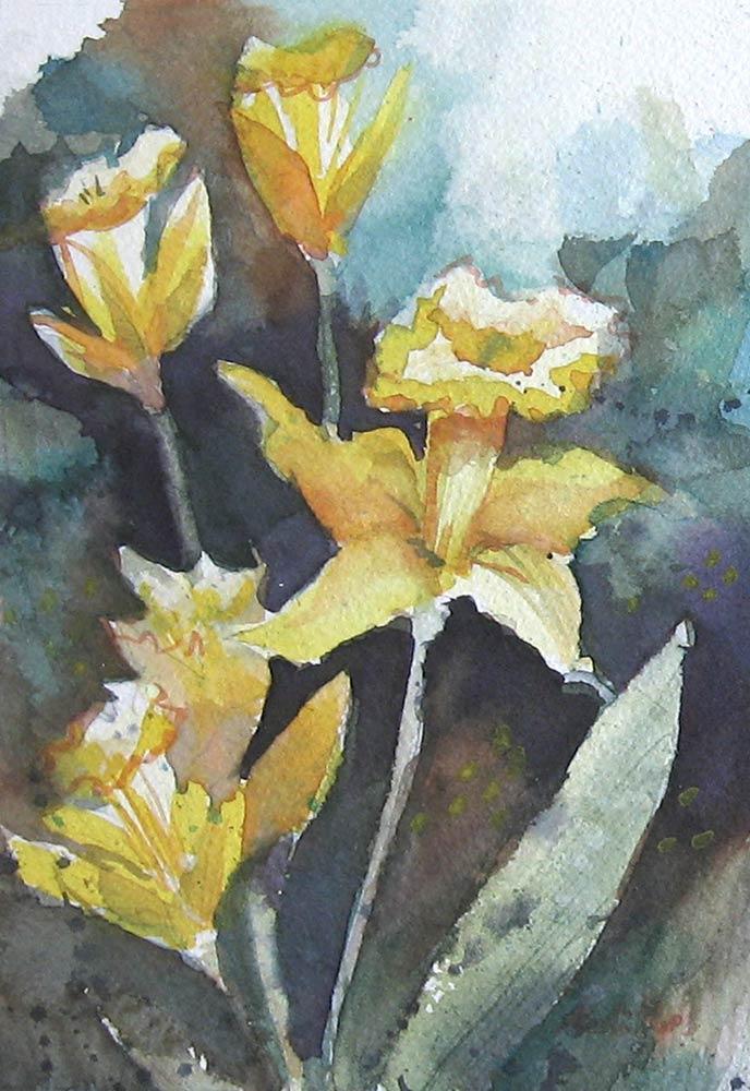 11-daffodil-09